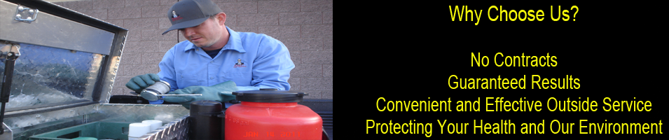 Why Agent Pest Control?